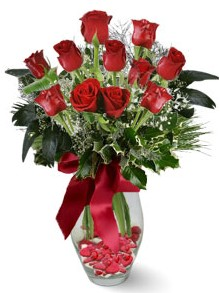 9 adet gül  Şanlıurfa çiçek gönderme sitemiz güvenlidir  kirmizi gül