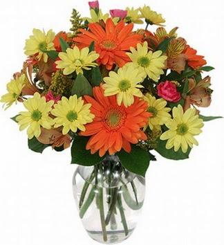 Şanlıurfa internetten çiçek satışı  vazo içerisinde karışık mevsim çiçekleri