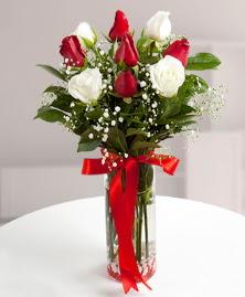 5 kırmızı 4 beyaz gül vazoda  Şanlıurfa ucuz çiçek gönder