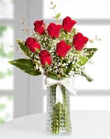 Cam vazoda 7 adet kırmızı gül  Şanlıurfa güvenli kaliteli hızlı çiçek