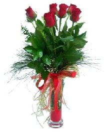 vazo içerisinde 5 kırmızı gül  Şanlıurfa cicek , cicekci