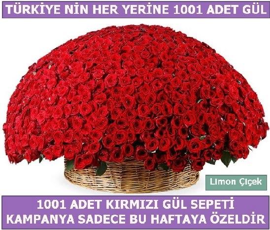 1001 Adet kırmızı gül Bu haftaya özel  Şanlıurfa anneler günü çiçek yolla