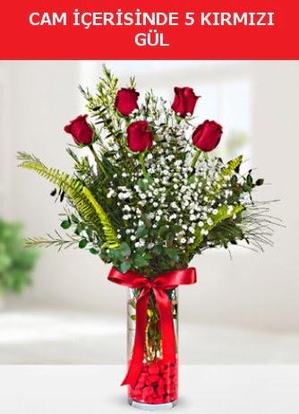 Cam içerisinde 5 adet kırmızı gül  Şanlıurfa İnternetten çiçek siparişi