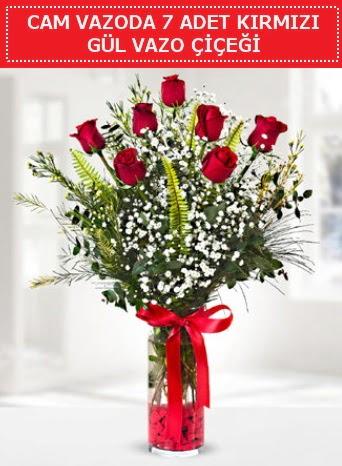 Cam vazoda 7 adet kırmızı gül çiçeği  Şanlıurfa hediye sevgilime hediye çiçek