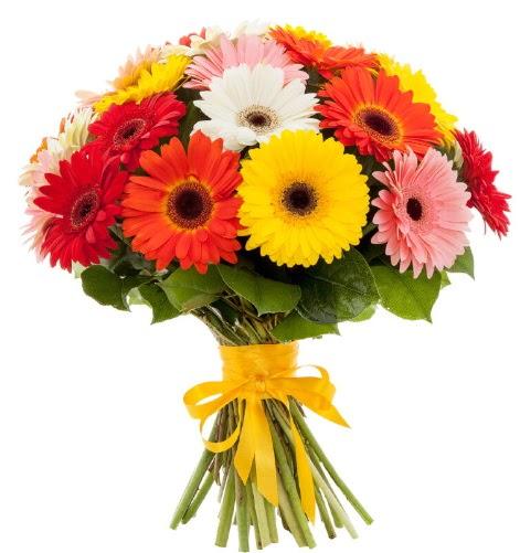 Gerbera demeti buketi  Şanlıurfa kaliteli taze ve ucuz çiçekler