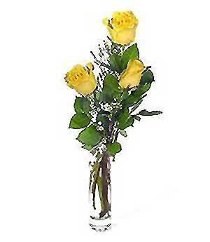 Şanlıurfa çiçek gönderme  3 adet kalite cam yada mika vazo gül