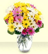 Şanlıurfa çiçek gönderme  mevsim çiçekleri mika yada cam vazo
