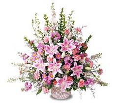 Şanlıurfa İnternetten çiçek siparişi  Tanzim mevsim çiçeklerinden çiçek modeli