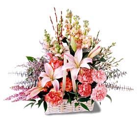 Şanlıurfa İnternetten çiçek siparişi  mevsim çiçekleri sepeti özel tanzim
