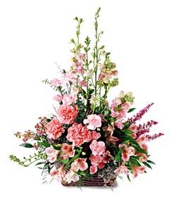 Şanlıurfa yurtiçi ve yurtdışı çiçek siparişi  mevsim çiçeklerinden özel