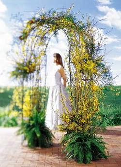 Şanlıurfa çiçek gönderme sitemiz güvenlidir  güller ve mevsim çiçegi
