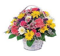 Şanlıurfa güvenli kaliteli hızlı çiçek  mevsim çiçekleri sepeti özel
