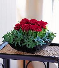 Şanlıurfa İnternetten çiçek siparişi  10 adet kare mika yada cam vazoda gül tanzim