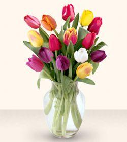 Şanlıurfa çiçek yolla  13 adet cam yada mika vazoda laleler