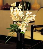 Şanlıurfa çiçek yolla  cam yada mika vazo içerisinde dal orkide