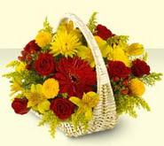 Şanlıurfa çiçekçi mağazası  sepette mevsim çiçekleri