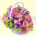 Şanlıurfa cicekciler , cicek siparisi  bir sepet dolusu kir çiçegi  Şanlıurfa hediye sevgilime hediye çiçek