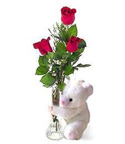 oyuncak ve 3 adet gül  Şanlıurfa İnternetten çiçek siparişi