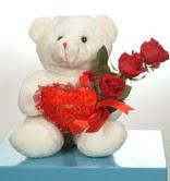 3 adetgül ve oyuncak   Şanlıurfa uluslararası çiçek gönderme