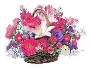 küçük karisik özel sepet   Şanlıurfa çiçekçiler