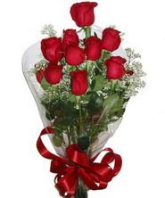 9 adet kaliteli kirmizi gül   Şanlıurfa uluslararası çiçek gönderme