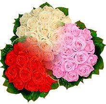 3 renkte gül seven sever   Şanlıurfa güvenli kaliteli hızlı çiçek