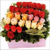 15 adet renkli gül ve cam   Şanlıurfa çiçek yolla , çiçek gönder , çiçekçi