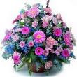 karisik mevsim kir çiçekleri  Şanlıurfa hediye sevgilime hediye çiçek