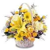 sadece sari çiçek sepeti   Şanlıurfa hediye sevgilime hediye çiçek
