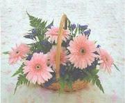 gerbera çiçeklerinde sepet   Şanlıurfa çiçek online çiçek siparişi