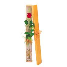 ince  kutuda  1  gül   Şanlıurfa çiçek online çiçek siparişi