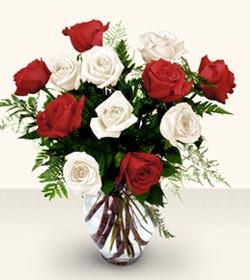 Şanlıurfa hediye çiçek yolla  6 adet kirmizi 6 adet beyaz gül cam içerisinde
