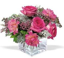 Şanlıurfa ucuz çiçek gönder  cam içerisinde 5 gül 7 gerbera çiçegi
