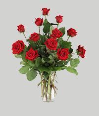 Şanlıurfa ucuz çiçek gönder  11 adet kirmizi gül vazo halinde