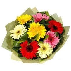 9 adet karisik gerbera demeti  Şanlıurfa çiçek siparişi vermek