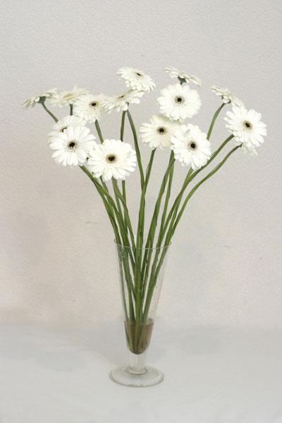 Şanlıurfa çiçek siparişi vermek  cam vazo içerisinde 17 adet sade gerbera