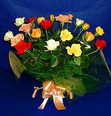Şanlıurfa online çiçekçi , çiçek siparişi  13 adet karisik renkli güller