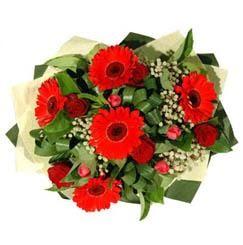Şanlıurfa yurtiçi ve yurtdışı çiçek siparişi   5 adet kirmizi gül 5 adet gerbera demeti