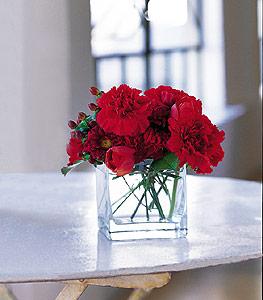 Şanlıurfa yurtiçi ve yurtdışı çiçek siparişi  kirmizinin sihri cam içinde görsel sade çiçekler