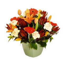 mevsim çiçeklerinden karma aranjman  Şanlıurfa 14 şubat sevgililer günü çiçek