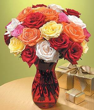 Şanlıurfa çiçek siparişi sitesi  13 adet renkli gül