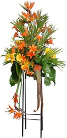 Şanlıurfa İnternetten çiçek siparişi  perförje tanzimi dügün nikah ve açilislara