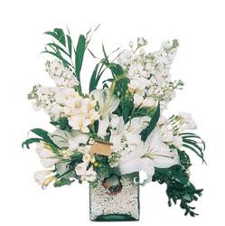 Şanlıurfa çiçek gönderme  sadece beyazlardan olusmus mevsim cam yada mika tanzim