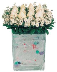 Şanlıurfa çiçek yolla , çiçek gönder , çiçekçi   7 adet beyaz gül cam yada mika vazo tanzim