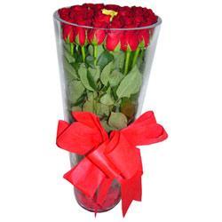 Şanlıurfa çiçekçiler  12 adet kirmizi gül cam yada mika vazo tanzim