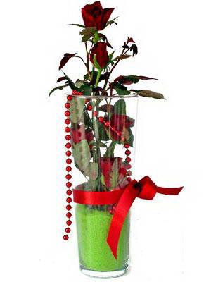 Şanlıurfa çiçek satışı  Cam yada mika içerisinde 9 adet kirmizi gül - sevdiklerinize özel