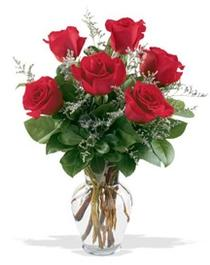 Şanlıurfa hediye sevgilime hediye çiçek  7 adet kirmizi gül cam yada mika vazoda sevenlere