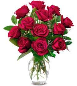 Şanlıurfa çiçek satışı  1 düzine kirmizi gül sevenlere özel vazo gülleri