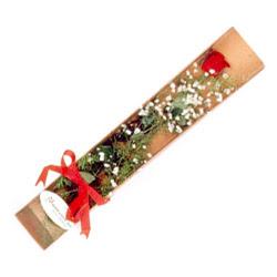 Şanlıurfa güvenli kaliteli hızlı çiçek  Kutuda tek 1 adet kirmizi gül çiçegi