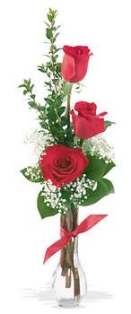 Şanlıurfa ucuz çiçek gönder  mika yada cam vazoda 3 adet kirmizi gül